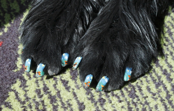 Pawdicures