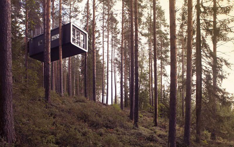 hotel pohon swedia cabin room