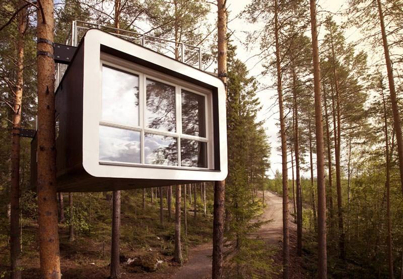 hotel pohon swedia cabin room 4