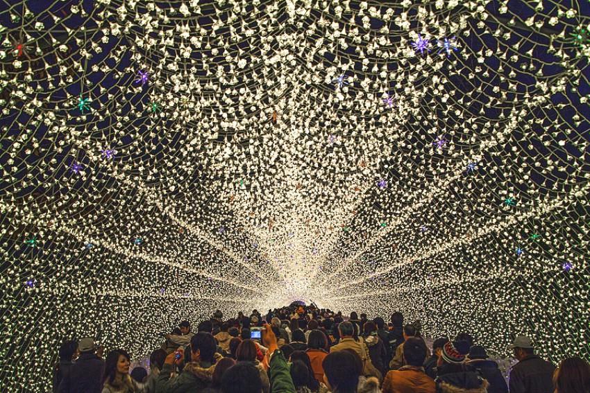 festival lampu musim dingin jepang