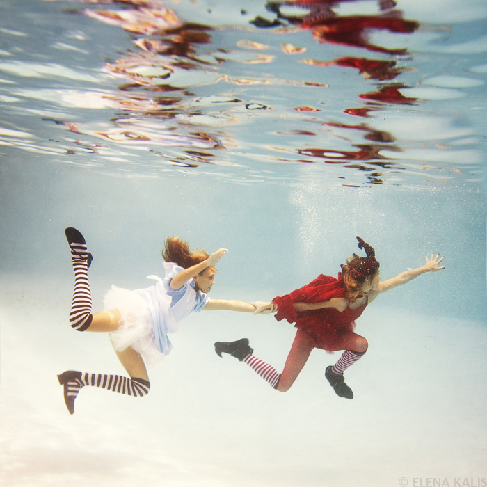 Elena Kalis Underwater Photography (9)