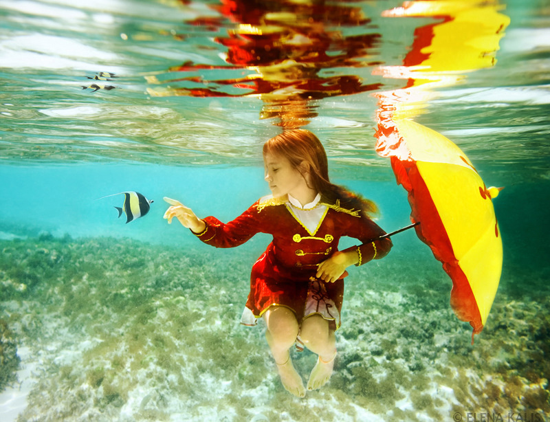 Elena Kalis Underwater Photography (10)