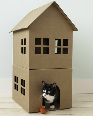 cat house play cat card board