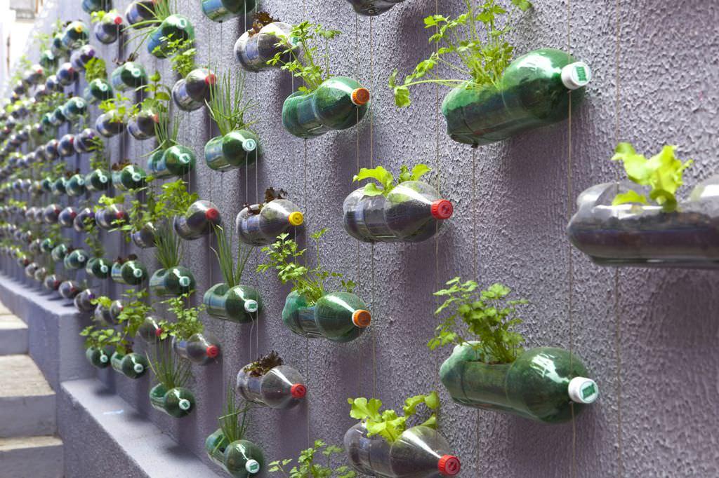 tanaman vertikal botol bekas 2