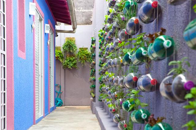 tanaman vertikal botol bekas 5