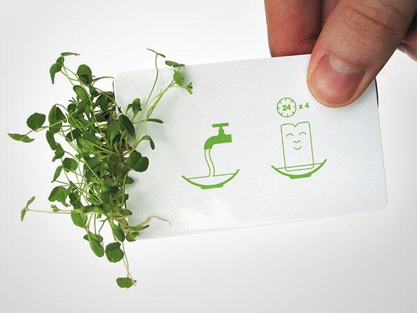 Contoh desain kartu nama kreatif dengan tanaman