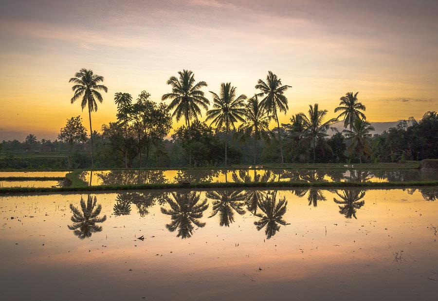 Subak Bali 7