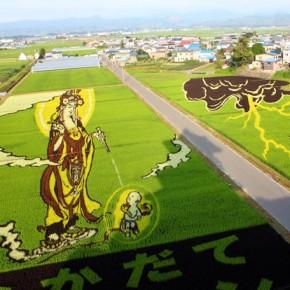 Tanbo Art, Seni Unik Melukis di atas Sawah