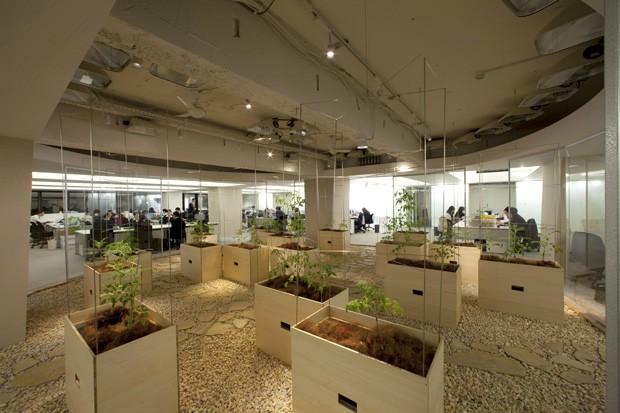 arsitektur pertanian ramah lingkungan pasona jepang 2