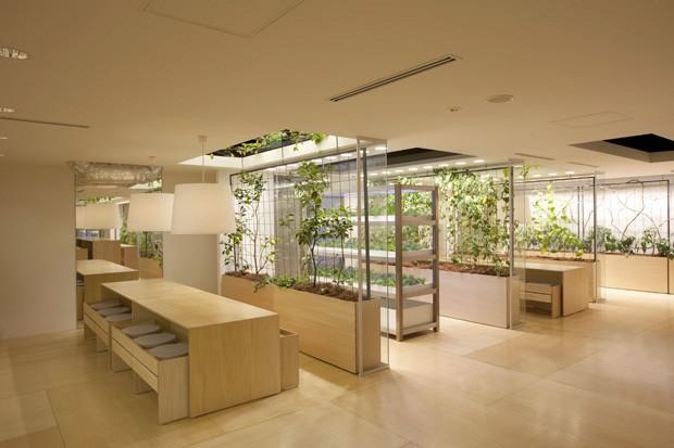 arsitektur pertanian ramah lingkungan pasona jepang 7