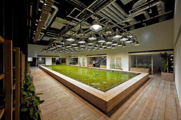 arsitektur pertanian ramah lingkungan pasona jepang 8