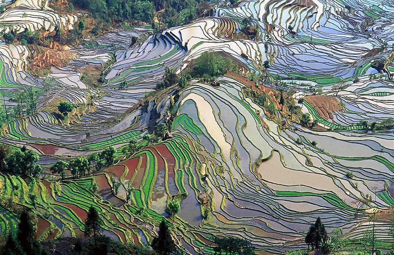 situs warisan dunia unesco cultural landscape of honghe hani rice terraces