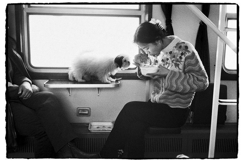 Potret Kemiskinan Warga China Diatas Kereta Api_15