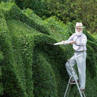 Pria Ini Menghabiskan Waktu 10 Tahun Mengubah Tamannya Menjadi Naga
