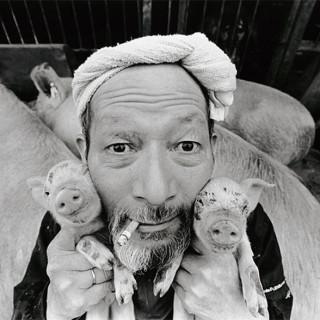Potret Kehidupan Peternak Babi di Jepang oleh Toshiteru Yamaji