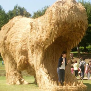 Invasi Dinosaurus Raksasa di Festival Wara, Jepang